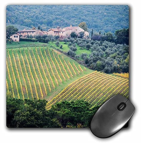 Danita Delimont - Agriculture - Italy, Tuscany. Farm house and vineyard in the Chianti region. - MousePad (mp_207911_1)