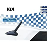 Maliyaw 7 Hintere Dachantenne Pole Gewinde Antenne Perfekter Ersatz Für Ix35 I30 Tucson Kia Sportage Nissan Volkswagen New Santafe Sportage R Sportage Cerato Rio Auto