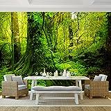 Fototapete Wald 352 x 250 cm - Vliestapete - Wandtapete - Vlies Phototapete - Wand - Wandbilder XXL - !!! 100% MADE IN GERMANY !!! Runa Tapete 9010011c