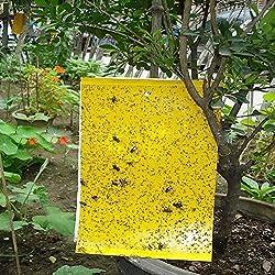 30 Stück Gelbtafeln