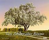 Vom Zauber alter Bäume - Kalender 2019 - DuMont-Verlag - Wandkalender - 58,4 cm x 48,5 cm