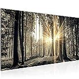 Bilder Wald Landschaft Wandbild 100 x 40 cm Vlies - Leinwand Bild XXL Format Wandbilder Wohnzimmer Wohnung Deko Kunstdrucke Braun 1 Teilig -100% MADE IN GERMANY - Fertig zum Aufhängen 503812a