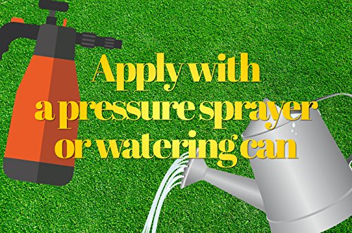 Pro-Kleen Artificial Grass Cleaner - Perfect for Homes with Dogs - Cleans, Disinfects, Deodorises & Fragrances - 4 x 5… 4