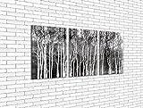 Bild Wandbild Leinwand Bilder Kunstdruck Bäume herbstlicher Birkenwald 60 x 160 cm