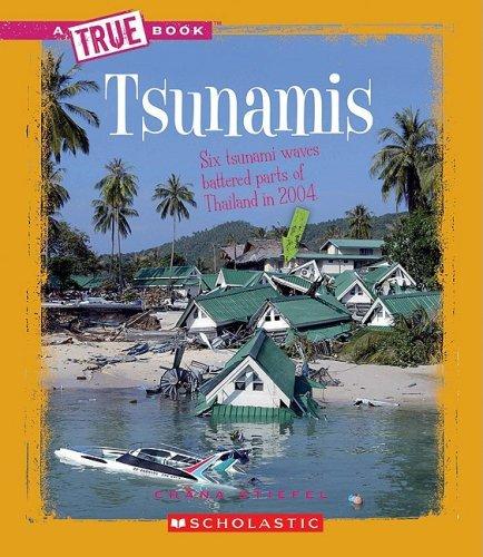 Tsunamis (True Books: Earth Science (Library)) by Chana Stiefel (2009-03-01)