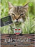 Katzengras - Mini-Tiger-Gras - Vitaminnahrung aus Kurzkultur