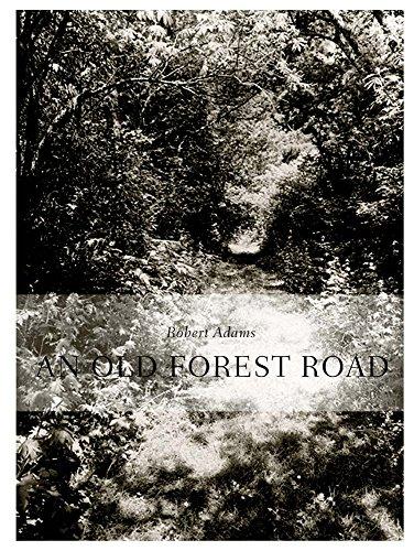 Robert Adams. An Old Forest Road: Ausst.Kat. Galerie Thomas Zander, Köln 2017 (Adam-galerie)