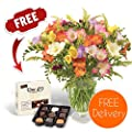 Fresh Flowers Delivered - FREE UK Delivery - 30 Mixed Freesias Bouquet with FREE Chocolates, Flower Food and BONUS Ebook Guide - Perfect for birthdays, anniversaries and thank you gifts