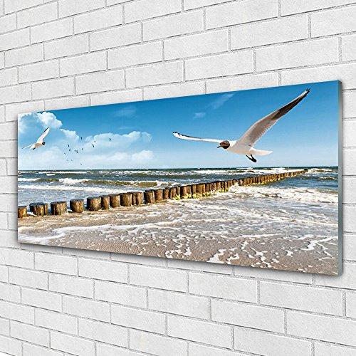 Impression sous verre de Tulup 125x50 cm - Tableau - Image - Photo panoramique - Paysage Mouettes Mer