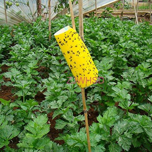 10pcs-yellow-sticky-insetto-afidi-whitefly-thrip-gnat-fruitfly-leafminer-trappola-abbott