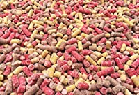1kg Pet Performance Premium High Energy Mixed Mealworm Berry & Insect Suet Pellets - Wild Bird Food