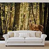 Hirsch Bäume Wald Natur- Forwall - Fototapete - Tapete - Fotomural - Mural Wandbild - (2286WM) - XXL - 312cm x 219cm - VLIES (EasyInstall) - 3 Pieces