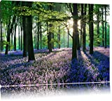TOPSELLER Wandbilder (Lavendel im Wald 120x80cm) Ruhe Stille Harmonie Bilder fertig gerahmt auf...
