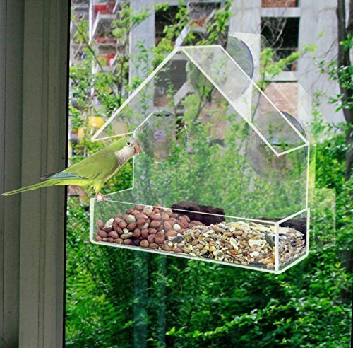 redwood-perspex-window-bird-feeder