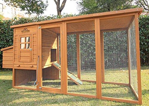 Pets Imperial® Arlington Hühnerstll mit extra langen Auslaufflächen 8ft/2,5m und Asphaltabdeckung geeignet für 4/6 Vögel je nach Größe - 2