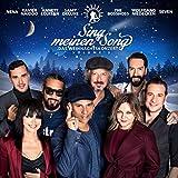 Various: Sing Meinen Song-Das Weihnachtskonzert Vol.3 (Audio CD)