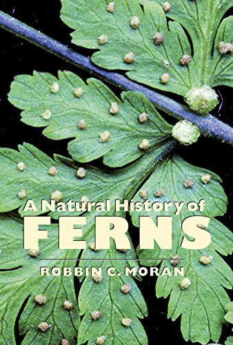 A Natural History of Ferns por Robbin C. Moran