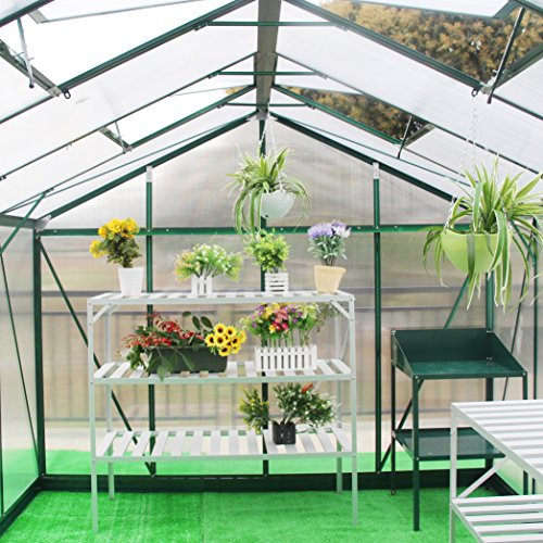 Y & J Gewächshausclips, 60 x Extra stark Pflanzenhalter