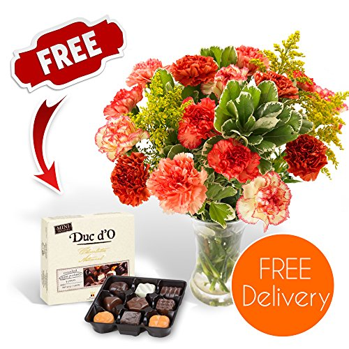SendaBunch Fresh Flowers Delivered - Free UK Delivery - Novelty Carnation Bouquet with Free Chocolates, Flower Food and Bonus Ebook Guide - Perfect For Birthdays, Anniversaries and Thank You Gifts