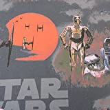 Stoff Meterware Baumwolle Star Wars Chewbacca C3PO R2D2