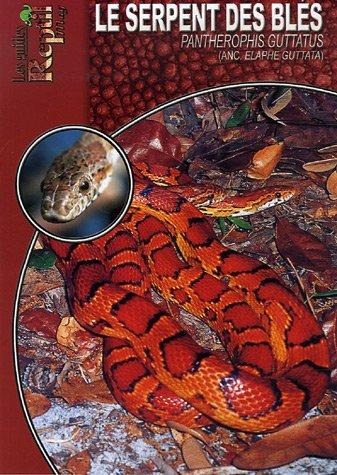 Le Serpent des blés: Pantherophis Guttatus