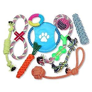 SchrammHunde Spielzeug -sehr schönes 10-teiligesHundespielzeug in fröhlichen, buntenFarben -für Welpen, kleine und mittelgroße Hunde geeignet -das Kauen befriedigt instinktive Bedürfnisse beim Hund -optimal zur Zahnreinigung geeignet -das Baumwoll...