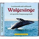 Naturgeräusche: Walgesänge mit spezieller Entspannungmusik, Naturgeräusche Walgesang