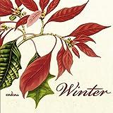 Winter: Ein Poesiealbum - zusammengestellt von Günter Berg