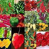 15 PKS - Semillas de la pimienta de chile Colección - habanero, jalapeño, etc.
