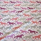 Stoff Baumwolle Jersey Meterware Pferd Pferde pink grau