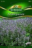 Thymian Feld- Quendel - Thymus serphyllum