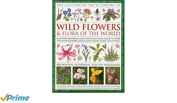 Illustrated Encyclopedia of Wild Flowers & Flora of the World: An ...