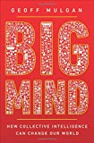 Big Mind – How Collective Intelligence Can Change Our World
