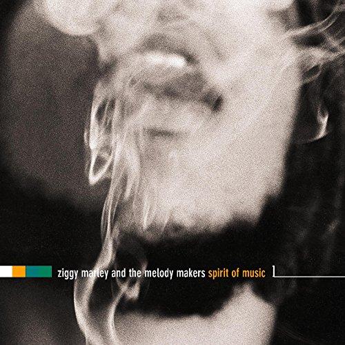 Cover zum Download Spirit of Music von Ziggy Marley