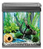 Tetra AquaArt Discovery Line LED Aquarium-Komplett-Set 30 Liter anthrazit (inklusive LED-Beleuchtung, Tag- und Nachtlichtschaltung und EasyCrystal Innenfilter, ideal für Krebse und Garnelen) - 4