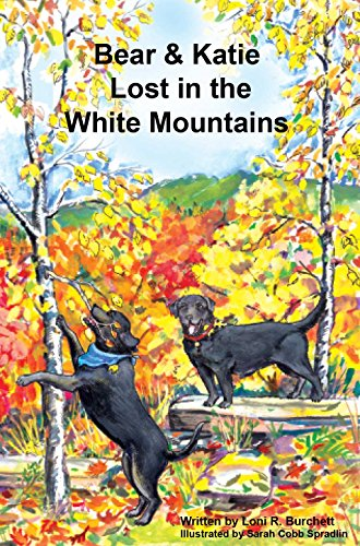 Bear & Katie Lost in the White Mountains (Bear & Katie Series Book 6) (English Edition)