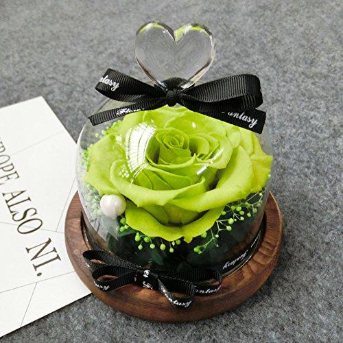 sch ne und das biest rose im glas vergleich online. Black Bedroom Furniture Sets. Home Design Ideas