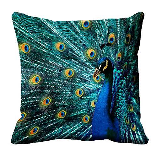 meSleep Kissen-Abdeckungs-Blauer dekorativer quadratischer Throwkissenkasten der Pfau-3d 12