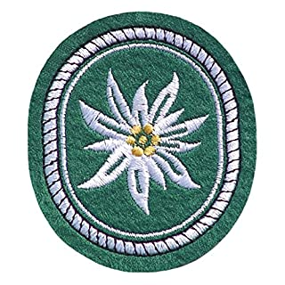 A. Blöchel Viele verschiedene Stoffabzeichen Deutschland Bundeswehr US Army US Airforce Landesflaggen Dienstgradabzeichen (Gebirsgjäger - Edelweiß)