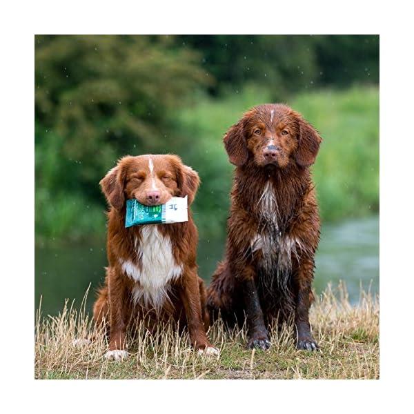 HOWND Yup You Stink Emergency Dog Wipes, 20 cm 4