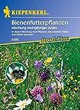 Kiepenkerl Bienenfutter Mischung (Bienenfutterpflanzen) 0-0cm / 1 Packung (Blumenzwiebeln, Sommerblüher (Aussaat im...