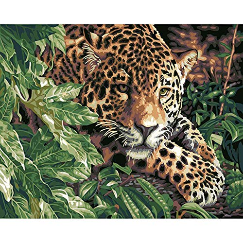 Gepard-mädchen-kleidung (JSGBYS Malen Nach Zahlen, Ölgemälde DIY-Gepard, Für Erwachsene, Kinder, Anfänger Geschenk Kits, Mit DIY Vorgedruckt Leinwand X1, Malerei Lacke X24, Pinsel X3-40X50 cm)