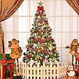 LED Lichterkette Glühbirnen Aussen Wasserdicht Lichterkette Birne Globus Schnur Licht 5M G40 Kugel RGB String Glühbirnen für Deko Weihnachten,Garten, Party(12 Birnen mit 1 Ersatzbirnen 6Stk Haken)