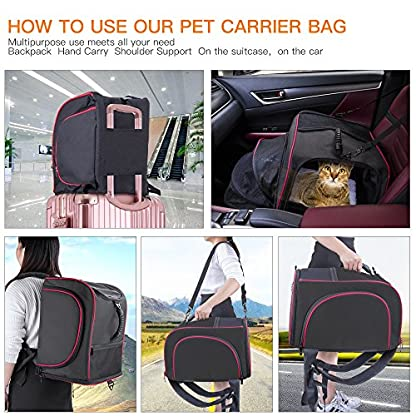 Siivton Pet Backpack Cat Carrier for Small Dogs Cats Rabbits, Collapsible Soft-Sided Mesh & Waterproof Dog Backpack with… 3