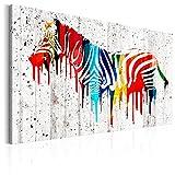 murando Bilder 120x80 cm - Leinwandbilder - Fertig Aufgespannt - 1 Teilig - Wandbilder XXL - Kunstdrucke - Wandbild - Poster Zebra Tier Textur bunt g-B-0008-b-a
