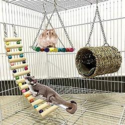 Ewolee Lot de 3 Jouets pour Cage à Oiseaux pour perroquets, Hamster, Sucre, Hamster, Oiseaux, balançoire pour Hamster, écureuil, Furet, Cochon d'Inde, Chinchilla, Perroquet