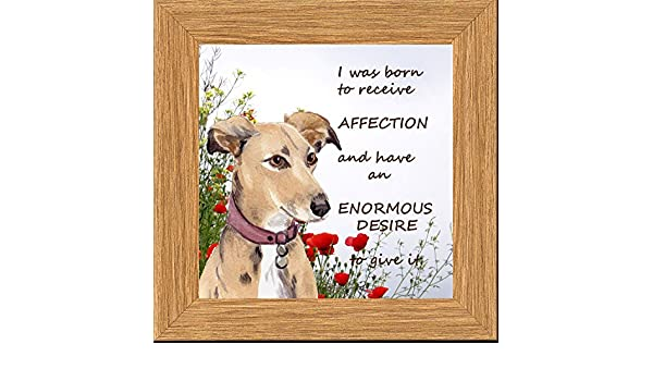 LURCHER HOUND DOG NEW HARDBOARD PLAQUE TILE WATERCOLOUR PRINT SANDRA COEN ARTIST