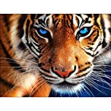 DIY 5D Diamond Painting, Crystal Rhinestone Embroidery Pictures Arts Craft for Home Wall Decor Aggressive Tiger 11.8 x 13.8