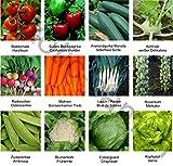 Samen - Saatgutsortiment - Set -