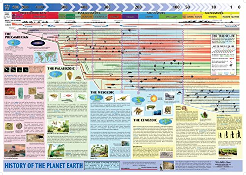History of Planet Earth